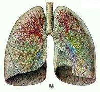 益气健脾,祛湿化痰治肺癌